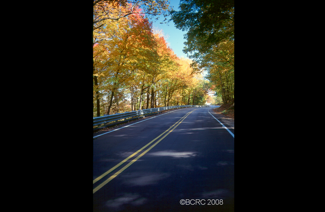 Road on a Fall Day